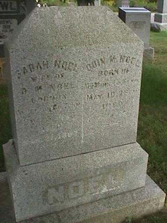 NOEL, SARAH - Henry County, Iowa | SARAH NOEL