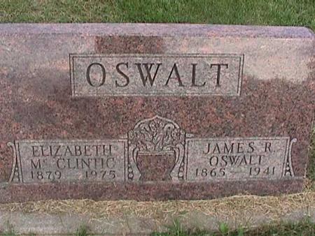 MCCLINTIC OSWALT, ELIZABETH - Henry County, Iowa   ELIZABETH MCCLINTIC OSWALT
