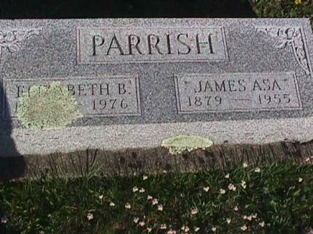 PARRISH, ELIZABETH B. - Henry County, Iowa   ELIZABETH B. PARRISH