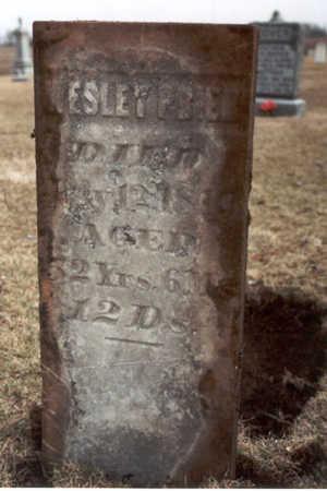 PRIER, WESLEY - Henry County, Iowa   WESLEY PRIER