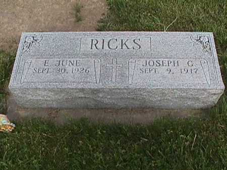 RICKS, E. JUNE - Henry County, Iowa | E. JUNE RICKS