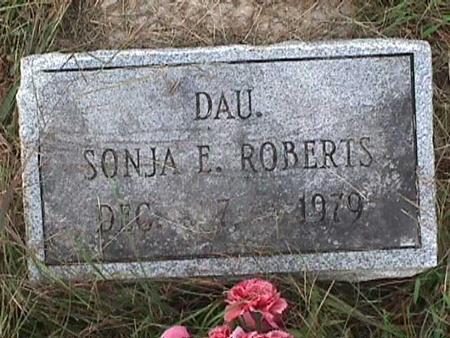 ROBERTS, SONJA E. - Henry County, Iowa | SONJA E. ROBERTS