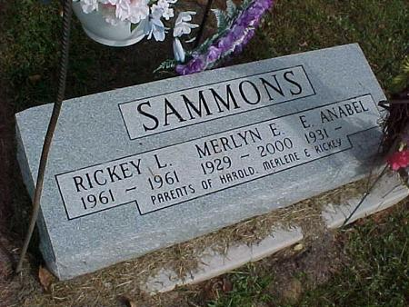 SAMMONS, RICKEY L. - Henry County, Iowa | RICKEY L. SAMMONS