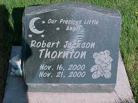 THORNTON, ROBERT JACKSON - Henry County, Iowa | ROBERT JACKSON THORNTON