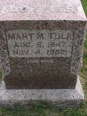 TULK, MARY M - Henry County, Iowa | MARY M TULK