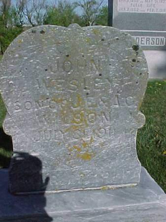 WILSON, JOHN WESLEY - Henry County, Iowa | JOHN WESLEY WILSON