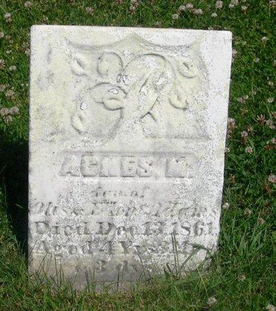 ADAMS, AGNES M - Howard County, Iowa | AGNES M ADAMS