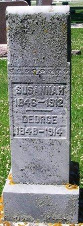 BARTHOLOMEW, GEORGE - Howard County, Iowa   GEORGE BARTHOLOMEW