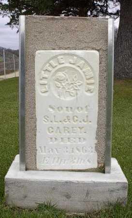 CAREY, JAMIE - Howard County, Iowa | JAMIE CAREY