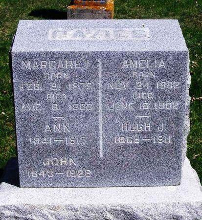 DAVIES, JOHN H - Howard County, Iowa   JOHN H DAVIES
