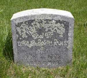 DAVIS, WILLIE G. - Howard County, Iowa   WILLIE G. DAVIS