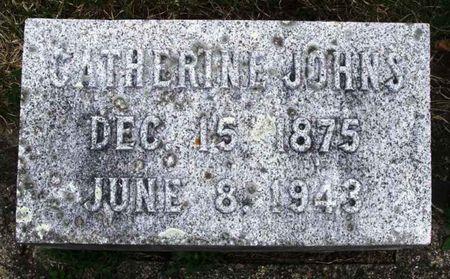 JOHNS, CATHERINE - Howard County, Iowa   CATHERINE JOHNS