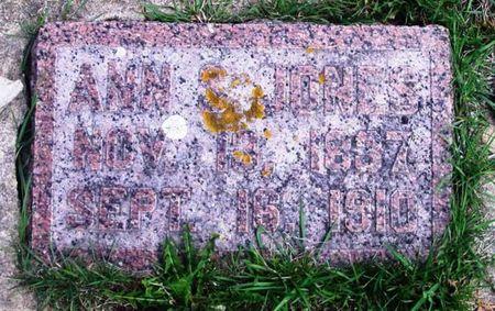 JONES, ANN S. - Howard County, Iowa   ANN S. JONES