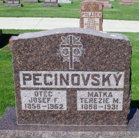 PECINOVSKY, TEREZIE M. - Howard County, Iowa | TEREZIE M. PECINOVSKY