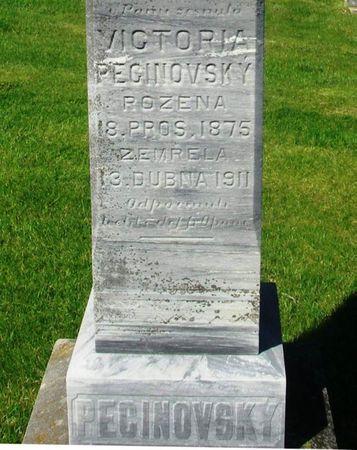 PECINOVSKY, VIKTORIA - Howard County, Iowa   VIKTORIA PECINOVSKY