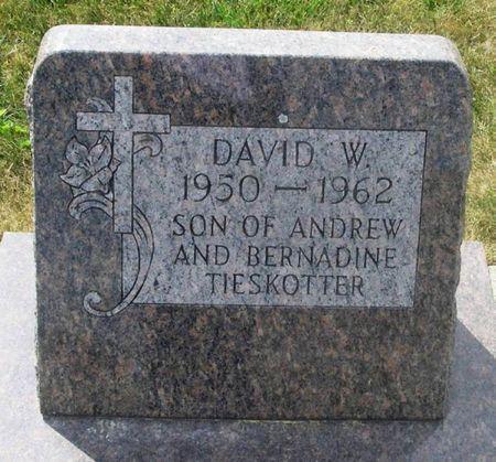 TIESKOTTER, DAVID W. - Howard County, Iowa | DAVID W. TIESKOTTER