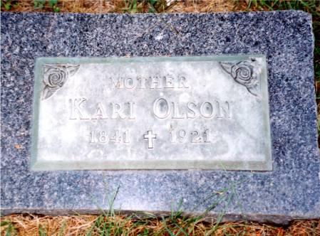 OLSON, KARI - Humboldt County, Iowa | KARI OLSON