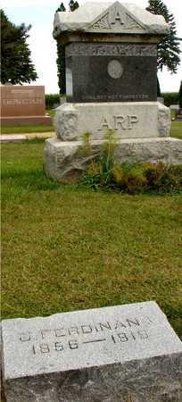 ARP, C. FERDINAND - Ida County, Iowa | C. FERDINAND ARP