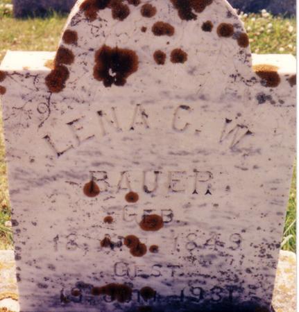 STARK BAUER, LENA C.W. - Ida County, Iowa | LENA C.W. STARK BAUER