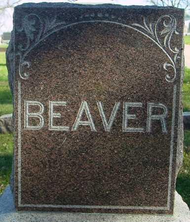 BEAVER, WILLIAM F. - Ida County, Iowa | WILLIAM F. BEAVER