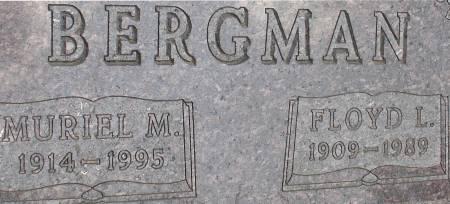 BERGMAN, FLOYD L. - Ida County, Iowa | FLOYD L. BERGMAN