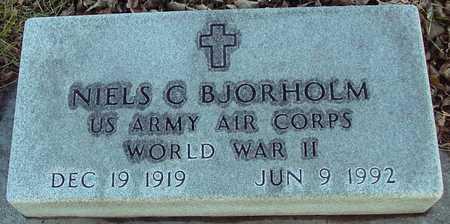 BJORHOLM, NIELS C. - Ida County, Iowa | NIELS C. BJORHOLM