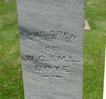 BOYE, (CHILDREN OF W.C. & M.L.) - Ida County, Iowa | (CHILDREN OF W.C. & M.L.) BOYE