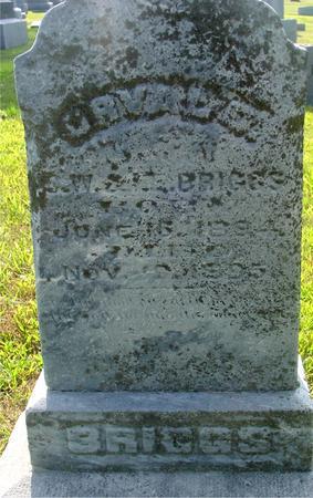 BRIGGS, ORVAL D. - Ida County, Iowa   ORVAL D. BRIGGS