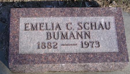 BUMANN, EMELIA C. - Ida County, Iowa | EMELIA C. BUMANN
