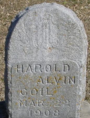 COIL, HAROLD ALVIN - Ida County, Iowa | HAROLD ALVIN COIL