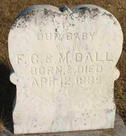 DALL, BABY - Ida County, Iowa | BABY DALL