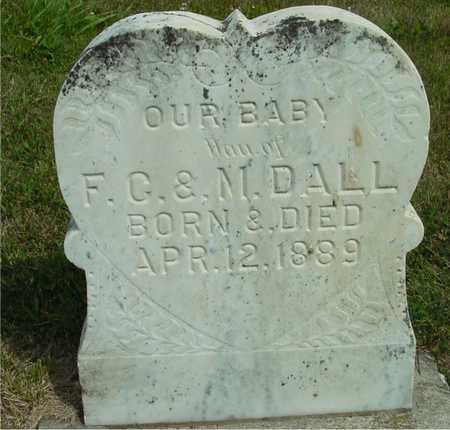 DALL, BABY - Ida County, Iowa   BABY DALL