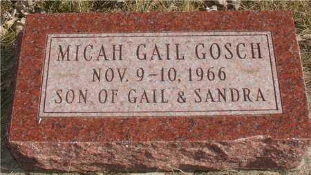 GOSCH, MICAH GAIL - Ida County, Iowa | MICAH GAIL GOSCH