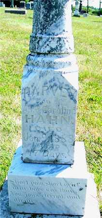 HAHN, HARVEY - Ida County, Iowa | HARVEY HAHN