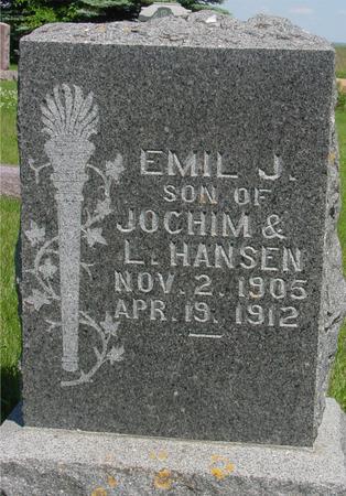 HANSEN, EMIL J. - Ida County, Iowa | EMIL J. HANSEN