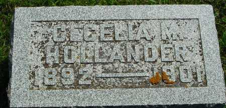HOLLANDER, CECELIA M. - Ida County, Iowa | CECELIA M. HOLLANDER