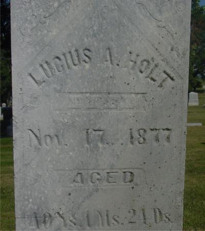 HOLT, LUCIUS A. - Ida County, Iowa | LUCIUS A. HOLT