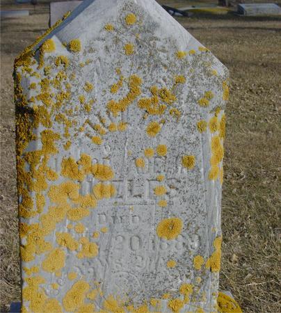 JUELFS, JULIA - Ida County, Iowa | JULIA JUELFS