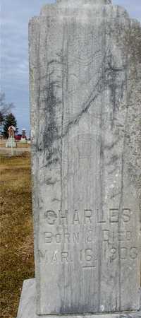 LAKE, CHARLES - Ida County, Iowa | CHARLES LAKE