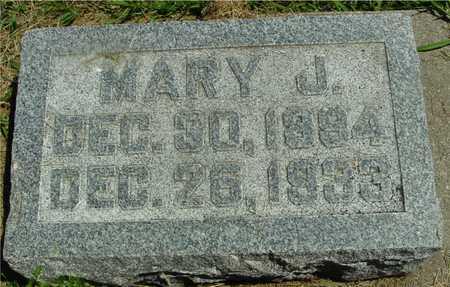 LANSINK, MARY J. - Ida County, Iowa   MARY J. LANSINK