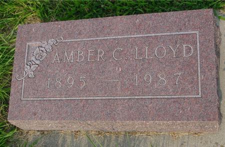 LLOYD, AMBER C. - Ida County, Iowa | AMBER C. LLOYD
