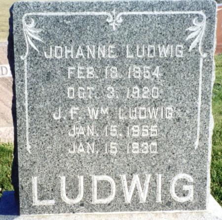 SCHMIDT LUDWIG, JOHANNA LUISE - Ida County, Iowa | JOHANNA LUISE SCHMIDT LUDWIG