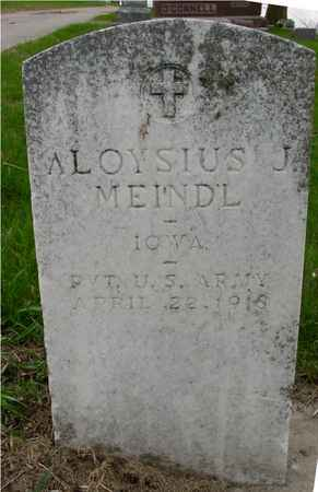 MEINDL, ALOYSIUS J. - Ida County, Iowa   ALOYSIUS J. MEINDL