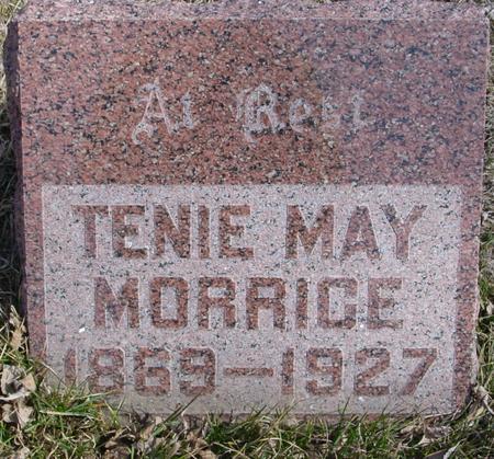 MORRICE, TENIE MAY - Ida County, Iowa | TENIE MAY MORRICE