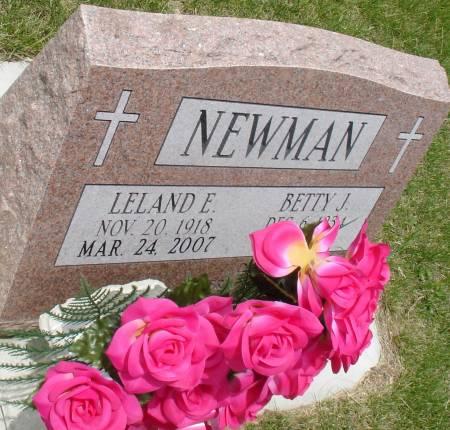 NEWMAN, LELAND E. - Ida County, Iowa | LELAND E. NEWMAN