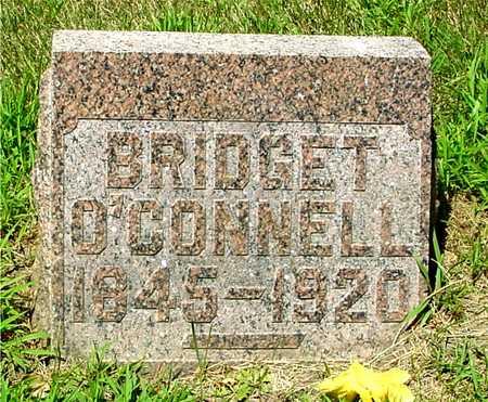 O'CONNELL, BRIDGET - Ida County, Iowa   BRIDGET O'CONNELL