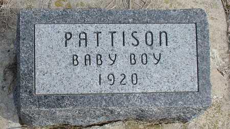 PATTISON, BABY BOY - Ida County, Iowa | BABY BOY PATTISON