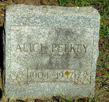 PELKY, ALICE - Ida County, Iowa   ALICE PELKY