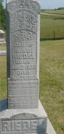 RIEDEL, DAU. OF A. C. - Ida County, Iowa | DAU. OF A. C. RIEDEL