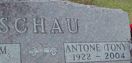 SCHAU, ANTONE (TONY) - Ida County, Iowa | ANTONE (TONY) SCHAU